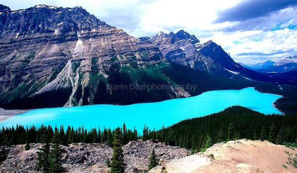 Peyto lake Can